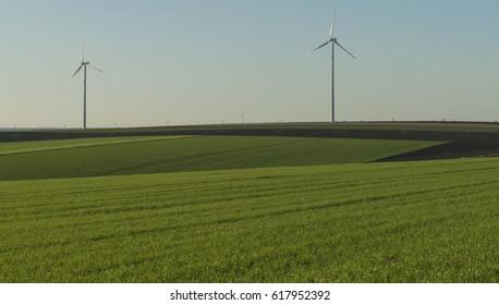 Wind turbines on green landscape
