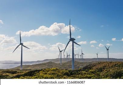 Wind Turbines on the High Seashore. Albany Wind Farm in Western Australia.