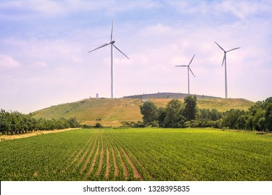 wind turbines on a sunny summer day