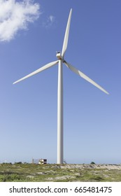 The wind turbines park in Guamare, Rio Grande do Norte, Brazil