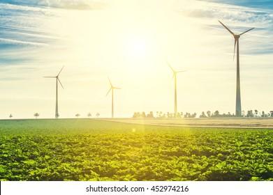 Wind Turbines - renewable energy sources