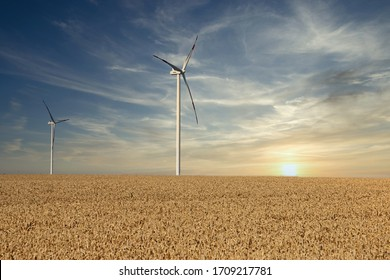 wind turbines in the wheat field sunset landscapes