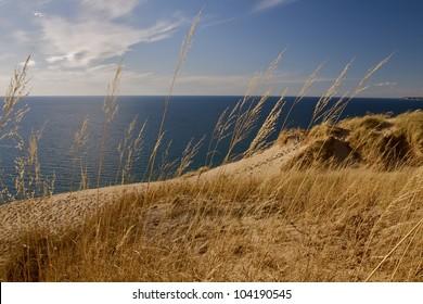 Windblown Dune Grass- Waving dune grass by Lake Michigan