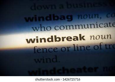 windbreak word in a dictionary. windbreak concept, definition.