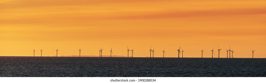 Windfarm on the sea at sunset panorama