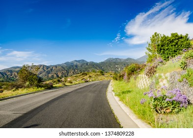 Winding asphalt road amidst spring blooms on hills, canyons, and mountains in Orange County, California.