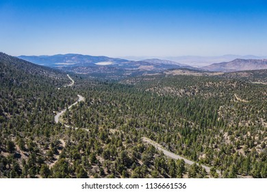 Winding asphalt road in the hills of the California wilderness of San Bernadino National Forest.