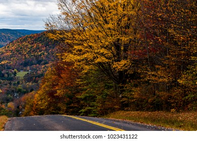 A winding back road through the autumn bathed hills within the Finger Lakes region of New York.