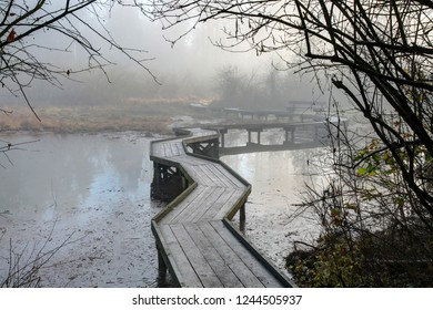 winding boardwalk in Inlet Park in a foggy late fall morning, Port Moody, British Columbia, Canada