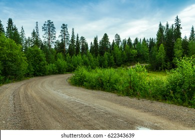 A winding dirt road in the forest