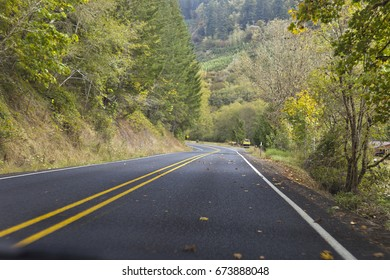 Winding forest road with lush green trees near Portland, Oregon