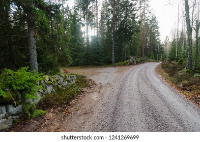 Winding gravel road through a coniferous forest by fall season