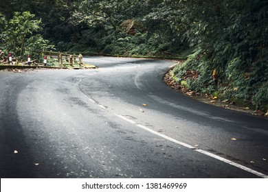 Winding mountain road inthe forest
