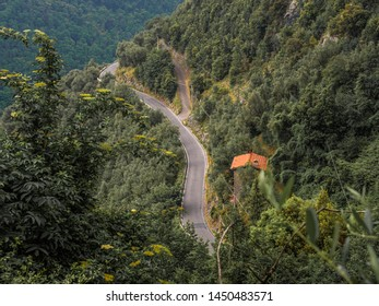 Winding mountain road that climbs through the woods