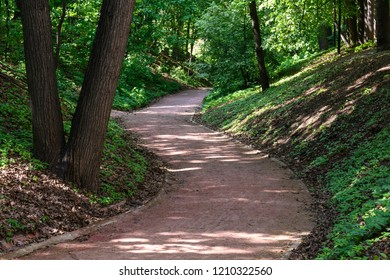 Winding path in the Park. Green grass, tree trunks in the foreground. Sunspots on the track and the surrounding slope