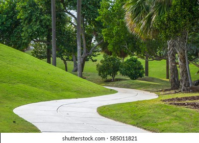 A winding path runs amongst Palm Trees near the beach on a sunny, summer, tropical day.