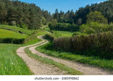 a winding path that goes up in the hills towards the forests