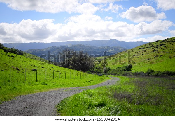 Winding path through a green valley
