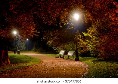 Winding pathway through colorful autumn woodland with two wooden rustic benches illuminated at night by wrought iron street lamps in a tranquil scene
