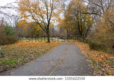 Winding Paved Path in a Park covered with Fallen Leaves on a Late Autumn Day.