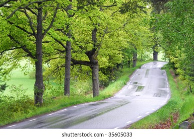 The winding road ahead