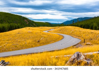 A winding road amidst golden fields in Yellowstone National Park, WY.