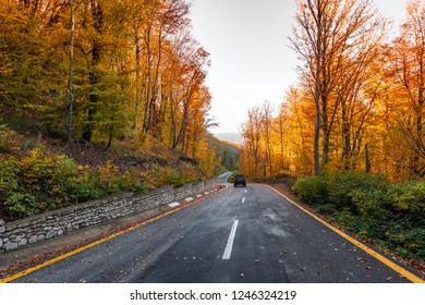 Winding road in the colorful autumn mountain forest
