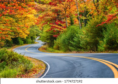 Winding road curves through scenic autumn foliage trees in New England.