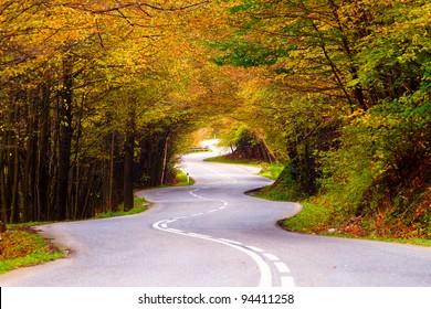 Winding road during the autumn season.