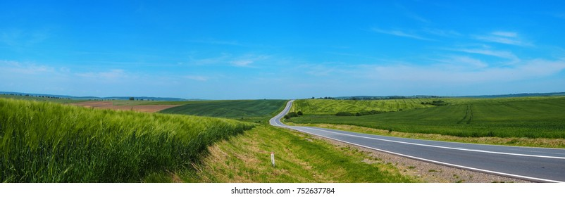 winding road leaving in the horizon amid the green field of young wheat in a bright sunny day, blue sky background