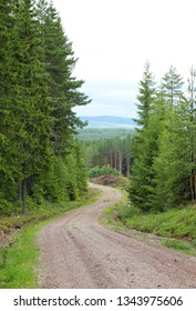 A winding road with a view in distance. Sweden in Summer.