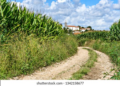 Winding rocky road in the middle of a cornfield heading for the beautiful village. Portugal. Europe.
