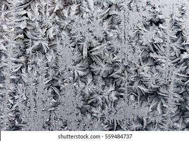 winding rows of frost of ice crystals on winter glass
