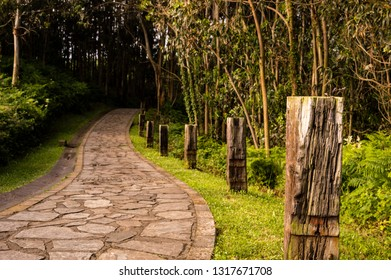 Winding stone road through sunny green forest illuminated by sunbeams, with railway sleepers on the side of the path.