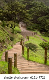 Winding Trail - Land's End Park - San Francisco