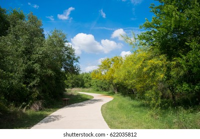 A winding trail through trees on a partly cloudy day.