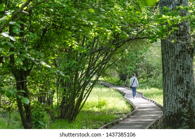 Winding wooden footpath with a walking woman in the swedish nature reserve Halltorps Hage at the island Oland