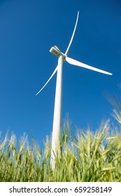 Windmill for electric power production in the green field of wheat