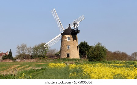 Windmill in an English Rural Landscape with flowering rapeseed in the foreground