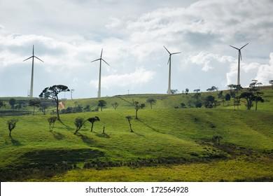 Windmill farm in Sri Lanka