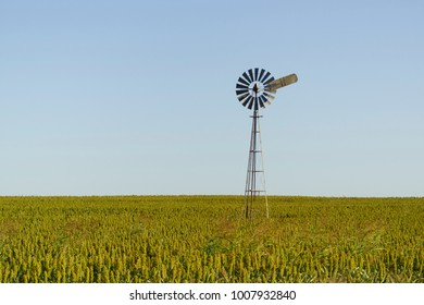 Windmill in a field, Queensland.