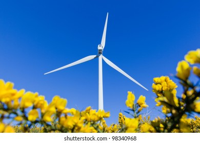 Windmill in the meadow over blue sky