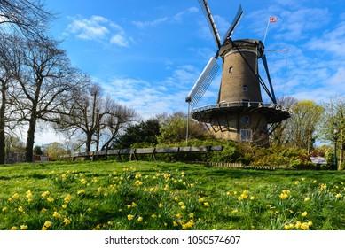 Windmill ('Molen van Piet') in Alkmaar, The Netherlands
