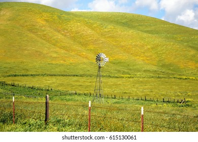 Windmill stands in yellow wildflower meadow surrounded by fence with nearby hillside also covered in yellow wildflowers.