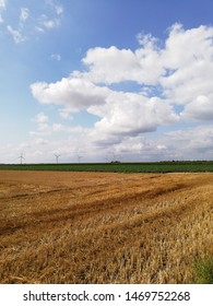 windmills at the horizon in summertime