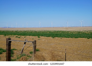 Windmills on the range in eastern Oregon near Condon