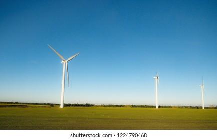 Windmills over flat countryside land in Denmark, green field under clear blue sky