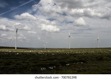 Windmills in a perfect landscape
