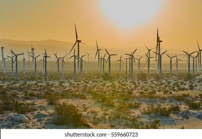 Windmills at Sunset