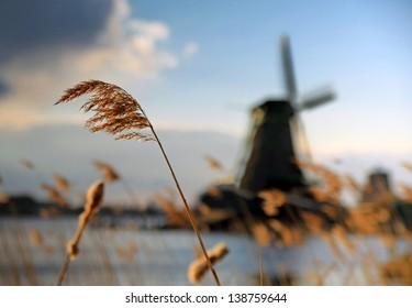 Windmills at Zaanstad, Netherlands.